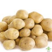 土豆(小)